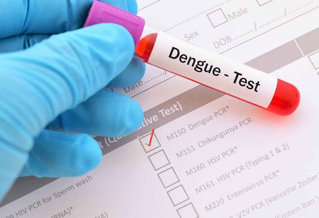 Mosquito-borne diseases: what are the Causes, symptoms and prevention